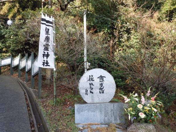 salamura1.jpg